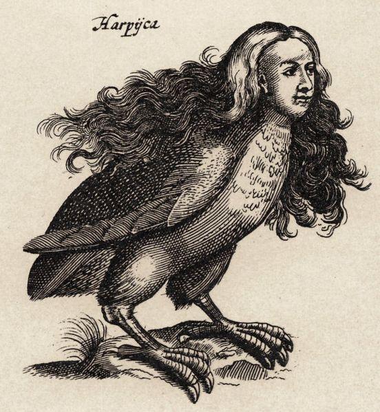 Harpij_-_I.I_Schipper_1660,_graveur_Matthius_Merian,_naar_J.Jonstons__Naekeurige_Beschryvingh_van_de_Natuur_